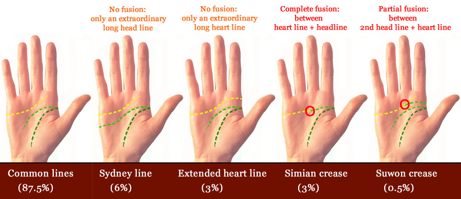 Extraordinary palm reading lines!