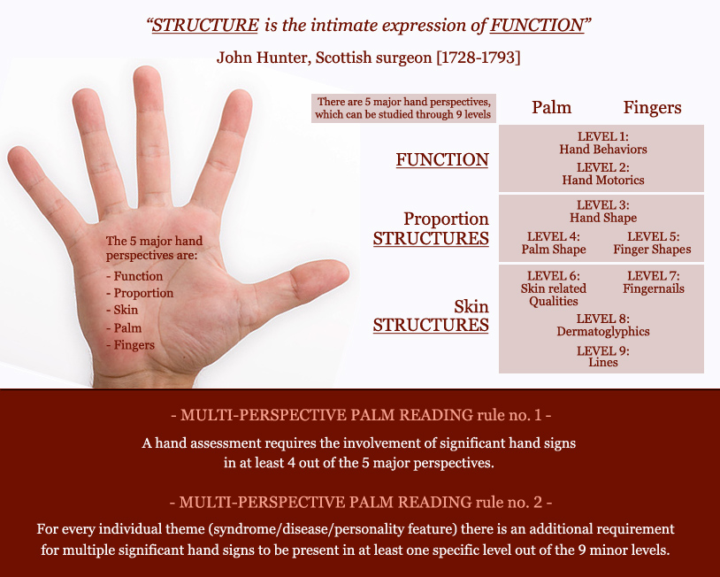 Palm reading guide: 5 perspectives.